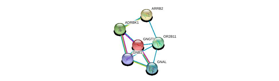 http://string-db.org/version_10/api/image/networkList?limit=0&targetmode=proteins&caller_identity=gene_cards&network_flavor=evidence&identifiers=9606.ENSP00000325682%0d%0a9606.ENSP00000248572%0d%0a9606.ENSP00000367869%0d%0a9606.ENSP00000334051%0d%0a9606.ENSP00000312262%0d%0a9606.ENSP00000269260%0d%0a