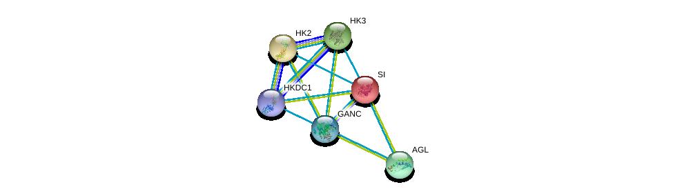 http://string-db.org/version_10/api/image/networkList?limit=0&targetmode=proteins&caller_identity=gene_cards&network_flavor=evidence&identifiers=9606.ENSP00000326227%0d%0a9606.ENSP00000264382%0d%0a9606.ENSP00000290573%0d%0a9606.ENSP00000292432%0d%0a9606.ENSP00000294724%0d%0a9606.ENSP00000346643%0d%0a