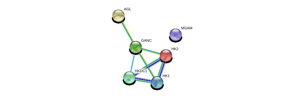 http://string-db.org/version_10/api/image/networkList?limit=0&targetmode=proteins&caller_identity=gene_cards&network_flavor=evidence&identifiers=9606.ENSP00000326227%0d%0a9606.ENSP00000294724%0d%0a9606.ENSP00000346643%0d%0a9606.ENSP00000290573%0d%0a9606.ENSP00000447378%0d%0a9606.ENSP00000384774%0d%0a