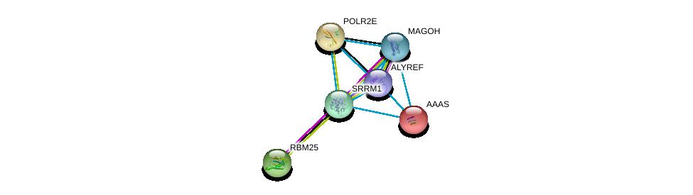 http://string-db.org/version_10/api/image/networkList?limit=0&targetmode=proteins&caller_identity=gene_cards&network_flavor=evidence&identifiers=9606.ENSP00000326261%0d%0a9606.ENSP00000360525%0d%0a9606.ENSP00000421592%0d%0a9606.ENSP00000261973%0d%0a9606.ENSP00000209873%0d%0a9606.ENSP00000215587%0d%0a