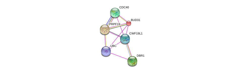 http://string-db.org/version_10/api/image/networkList?limit=0&targetmode=proteins&caller_identity=gene_cards&network_flavor=evidence&identifiers=9606.ENSP00000326411%0d%0a9606.ENSP00000260803%0d%0a9606.ENSP00000344818%0d%0a9606.ENSP00000222969%0d%0a9606.ENSP00000304370%0d%0a9606.ENSP00000227524%0d%0a