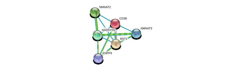 http://string-db.org/version_10/api/image/networkList?limit=0&targetmode=proteins&caller_identity=gene_cards&network_flavor=evidence&identifiers=9606.ENSP00000326424%0d%0a9606.ENSP00000226279%0d%0a9606.ENSP00000287713%0d%0a9606.ENSP00000350265%0d%0a9606.ENSP00000340523%0d%0a9606.ENSP00000265016%0d%0a