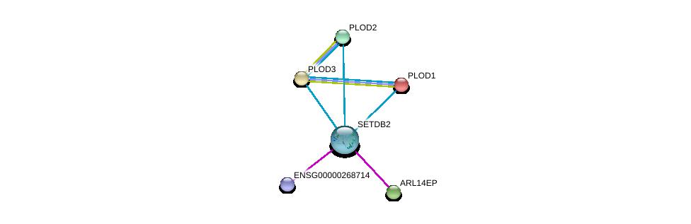 http://string-db.org/version_10/api/image/networkList?limit=0&targetmode=proteins&caller_identity=gene_cards&network_flavor=evidence&identifiers=9606.ENSP00000326477%0d%0a9606.ENSP00000196061%0d%0a9606.ENSP00000223127%0d%0a9606.ENSP00000282903%0d%0a9606.ENSP00000282032%0d%0a9606.ENSP00000470389%0d%0a