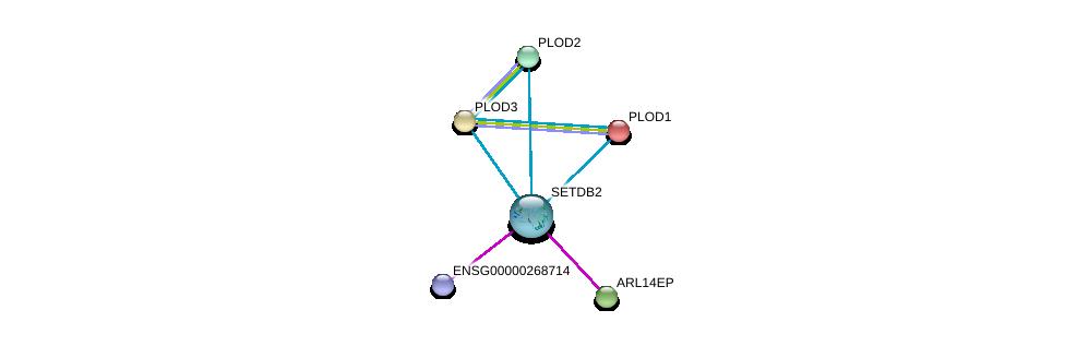 http://string-db.org/version_10/api/image/networkList?limit=0&targetmode=proteins&caller_identity=gene_cards&network_flavor=evidence&identifiers=9606.ENSP00000326477%0d%0a9606.ENSP00000223127%0d%0a9606.ENSP00000196061%0d%0a9606.ENSP00000282903%0d%0a9606.ENSP00000282032%0d%0a9606.ENSP00000470389%0d%0a