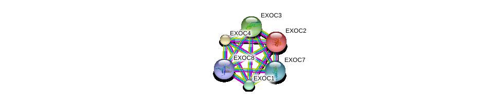 http://string-db.org/version_10/api/image/networkList?limit=0&targetmode=proteins&caller_identity=gene_cards&network_flavor=evidence&identifiers=9606.ENSP00000326514%0d%0a9606.ENSP00000253861%0d%0a9606.ENSP00000230449%0d%0a9606.ENSP00000323377%0d%0a9606.ENSP00000334100%0d%0a9606.ENSP00000353564%0d%0a