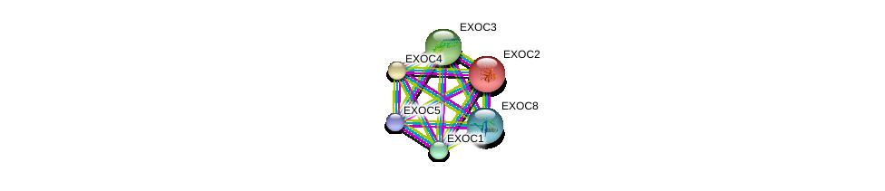 http://string-db.org/version_10/api/image/networkList?limit=0&targetmode=proteins&caller_identity=gene_cards&network_flavor=evidence&identifiers=9606.ENSP00000326514%0d%0a9606.ENSP00000253861%0d%0a9606.ENSP00000230449%0d%0a9606.ENSP00000353564%0d%0a9606.ENSP00000389934%0d%0a9606.ENSP00000323377%0d%0a