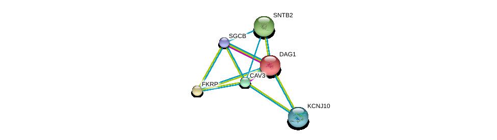 http://string-db.org/version_10/api/image/networkList?limit=0&targetmode=proteins&caller_identity=gene_cards&network_flavor=evidence&identifiers=9606.ENSP00000326570%0d%0a9606.ENSP00000312435%0d%0a9606.ENSP00000357068%0d%0a9606.ENSP00000338191%0d%0a9606.ENSP00000370839%0d%0a9606.ENSP00000341940%0d%0a