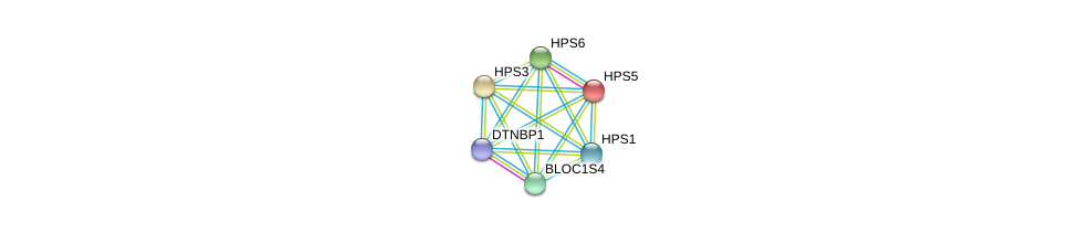 http://string-db.org/version_10/api/image/networkList?limit=0&targetmode=proteins&caller_identity=gene_cards&network_flavor=evidence&identifiers=9606.ENSP00000326649%0d%0a9606.ENSP00000265967%0d%0a9606.ENSP00000296051%0d%0a9606.ENSP00000299238%0d%0a9606.ENSP00000318128%0d%0a9606.ENSP00000341680%0d%0a