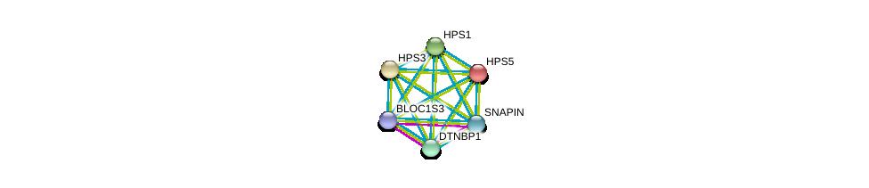 http://string-db.org/version_10/api/image/networkList?limit=0&targetmode=proteins&caller_identity=gene_cards&network_flavor=evidence&identifiers=9606.ENSP00000326649%0d%0a9606.ENSP00000265967%0d%0a9606.ENSP00000341680%0d%0a9606.ENSP00000296051%0d%0a9606.ENSP00000393840%0d%0a9606.ENSP00000357674%0d%0a