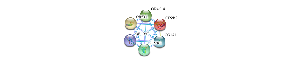 http://string-db.org/version_10/api/image/networkList?limit=0&targetmode=proteins&caller_identity=gene_cards&network_flavor=evidence&identifiers=9606.ENSP00000326718%0d%0a9606.ENSP00000305011%0d%0a9606.ENSP00000305055%0d%0a9606.ENSP00000305207%0d%0a9606.ENSP00000304807%0d%0a9606.ENSP00000304419%0d%0a
