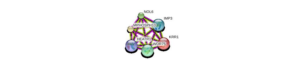 http://string-db.org/version_10/api/image/networkList?limit=0&targetmode=proteins&caller_identity=gene_cards&network_flavor=evidence&identifiers=9606.ENSP00000326981%0d%0a9606.ENSP00000244230%0d%0a9606.ENSP00000314193%0d%0a9606.ENSP00000229214%0d%0a9606.ENSP00000297990%0d%0a9606.ENSP00000355541%0d%0a