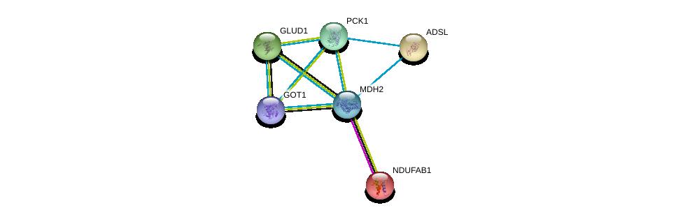 http://string-db.org/version_10/api/image/networkList?limit=0&targetmode=proteins&caller_identity=gene_cards&network_flavor=evidence&identifiers=9606.ENSP00000327070%0d%0a9606.ENSP00000319814%0d%0a9606.ENSP00000359539%0d%0a9606.ENSP00000007516%0d%0a9606.ENSP00000216194%0d%0a9606.ENSP00000277865%0d%0a