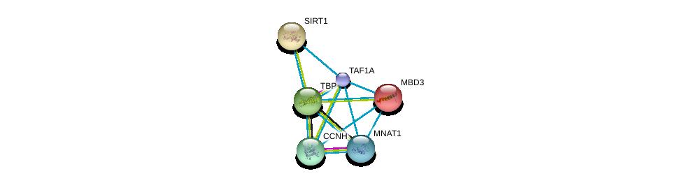 http://string-db.org/version_10/api/image/networkList?limit=0&targetmode=proteins&caller_identity=gene_cards&network_flavor=evidence&identifiers=9606.ENSP00000327072%0d%0a9606.ENSP00000230354%0d%0a9606.ENSP00000156825%0d%0a9606.ENSP00000212015%0d%0a9606.ENSP00000256897%0d%0a9606.ENSP00000261245%0d%0a