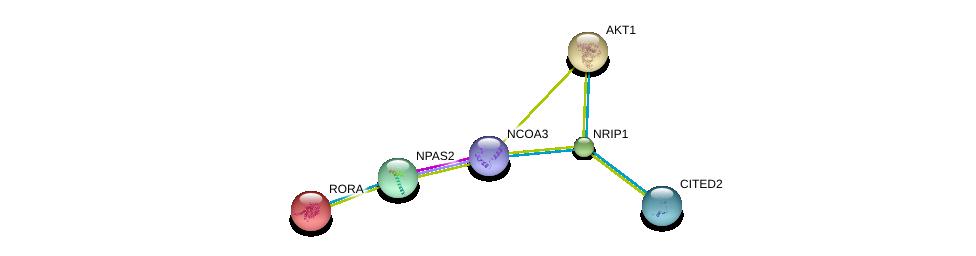 http://string-db.org/version_10/api/image/networkList?limit=0&targetmode=proteins&caller_identity=gene_cards&network_flavor=evidence&identifiers=9606.ENSP00000327213%0d%0a9606.ENSP00000356623%0d%0a9606.ENSP00000338283%0d%0a9606.ENSP00000270202%0d%0a9606.ENSP00000261523%0d%0a9606.ENSP00000361066%0d%0a