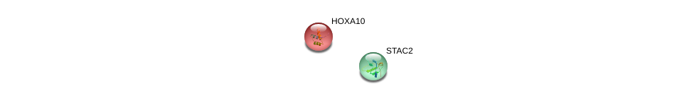 http://string-db.org/version_10/api/image/networkList?limit=0&targetmode=proteins&caller_identity=gene_cards&network_flavor=evidence&identifiers=9606.ENSP00000327509%0d%0a9606.ENSP00000283921%0d%0a