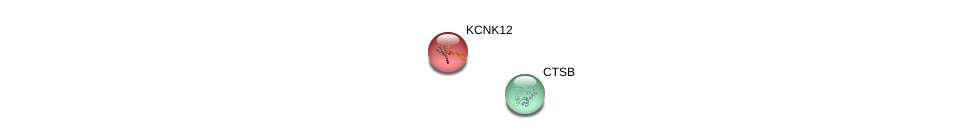 http://string-db.org/version_10/api/image/networkList?limit=0&targetmode=proteins&caller_identity=gene_cards&network_flavor=evidence&identifiers=9606.ENSP00000327611%0d%0a9606.ENSP00000342070%0d%0a