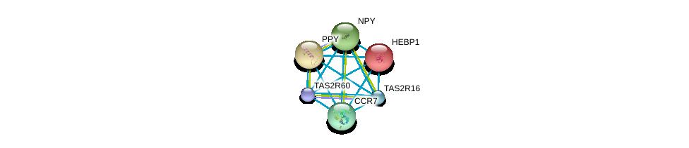http://string-db.org/version_10/api/image/networkList?limit=0&targetmode=proteins&caller_identity=gene_cards&network_flavor=evidence&identifiers=9606.ENSP00000327724%0d%0a9606.ENSP00000014930%0d%0a9606.ENSP00000225992%0d%0a9606.ENSP00000242152%0d%0a9606.ENSP00000246657%0d%0a9606.ENSP00000249284%0d%0a