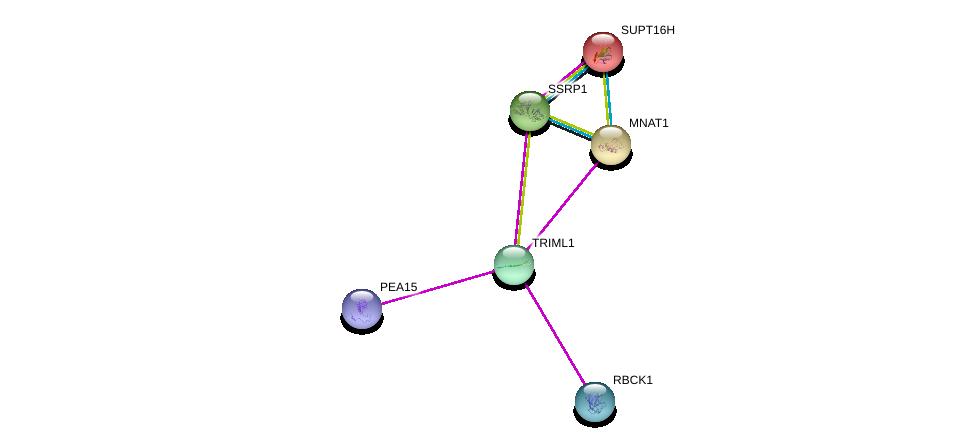 http://string-db.org/version_10/api/image/networkList?limit=0&targetmode=proteins&caller_identity=gene_cards&network_flavor=evidence&identifiers=9606.ENSP00000327738%0d%0a9606.ENSP00000261245%0d%0a9606.ENSP00000348632%0d%0a9606.ENSP00000353660%0d%0a9606.ENSP00000216297%0d%0a9606.ENSP00000278412%0d%0a
