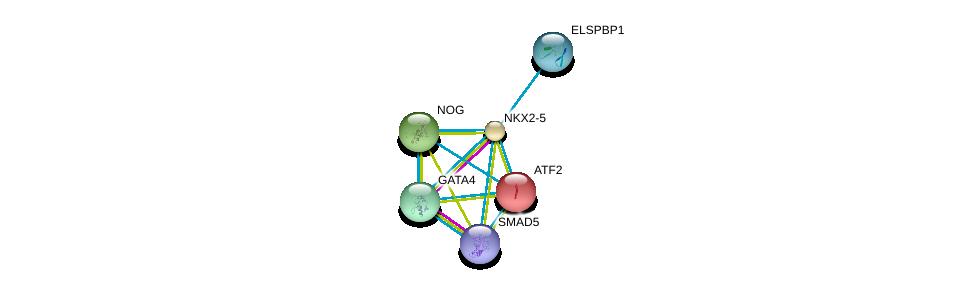 http://string-db.org/version_10/api/image/networkList?limit=0&targetmode=proteins&caller_identity=gene_cards&network_flavor=evidence&identifiers=9606.ENSP00000327758%0d%0a9606.ENSP00000334458%0d%0a9606.ENSP00000264110%0d%0a9606.ENSP00000340660%0d%0a9606.ENSP00000328181%0d%0a9606.ENSP00000441954%0d%0a