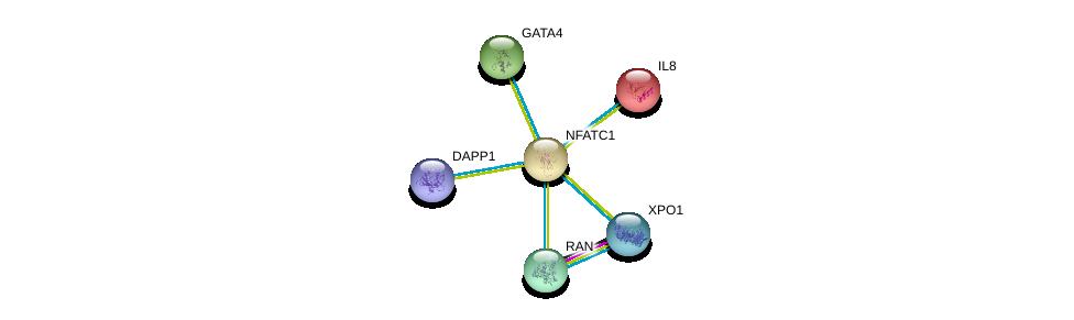 http://string-db.org/version_10/api/image/networkList?limit=0&targetmode=proteins&caller_identity=gene_cards&network_flavor=evidence&identifiers=9606.ENSP00000327850%0d%0a9606.ENSP00000334458%0d%0a9606.ENSP00000306512%0d%0a9606.ENSP00000384863%0d%0a9606.ENSP00000423602%0d%0a9606.ENSP00000376176%0d%0a