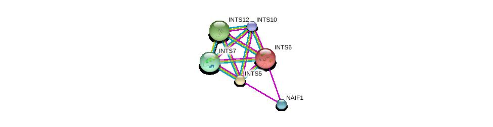 http://string-db.org/version_10/api/image/networkList?limit=0&targetmode=proteins&caller_identity=gene_cards&network_flavor=evidence&identifiers=9606.ENSP00000327889%0d%0a9606.ENSP00000310260%0d%0a9606.ENSP00000340737%0d%0a9606.ENSP00000355961%0d%0a9606.ENSP00000362170%0d%0a9606.ENSP00000381064%0d%0a