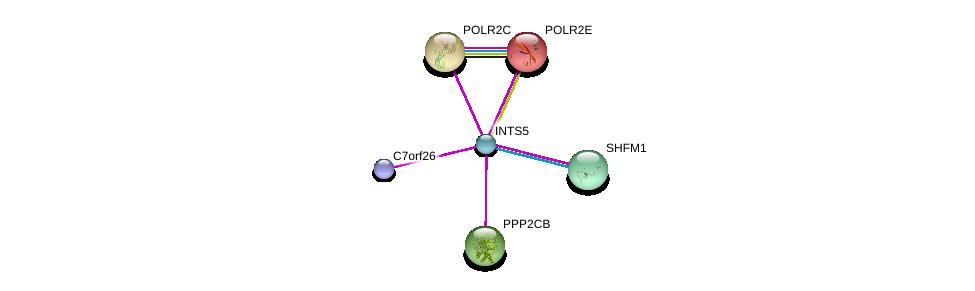 http://string-db.org/version_10/api/image/networkList?limit=0&targetmode=proteins&caller_identity=gene_cards&network_flavor=evidence&identifiers=9606.ENSP00000327889%0d%0a9606.ENSP00000340220%0d%0a9606.ENSP00000215587%0d%0a9606.ENSP00000219252%0d%0a9606.ENSP00000221138%0d%0a9606.ENSP00000248566%0d%0a
