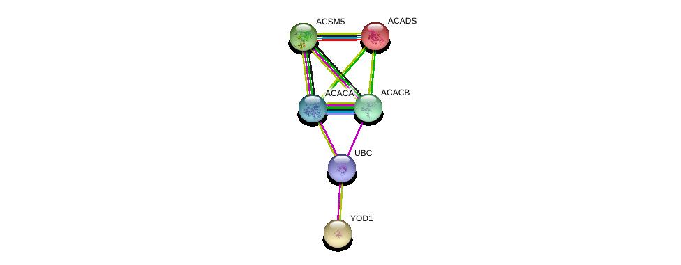 http://string-db.org/version_10/api/image/networkList?limit=0&targetmode=proteins&caller_identity=gene_cards&network_flavor=evidence&identifiers=9606.ENSP00000327916%0d%0a9606.ENSP00000242592%0d%0a9606.ENSP00000341044%0d%0a9606.ENSP00000344789%0d%0a9606.ENSP00000326813%0d%0a9606.ENSP00000344818%0d%0a