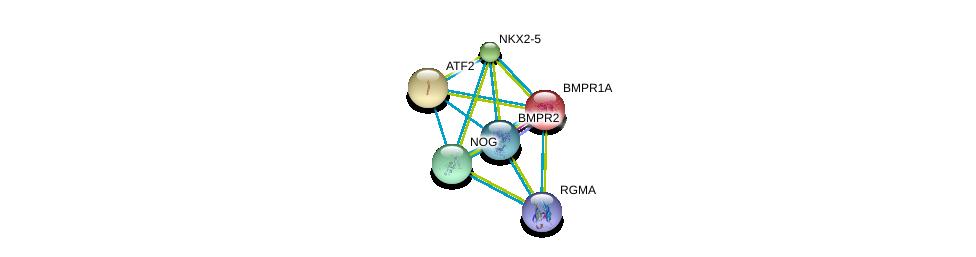 http://string-db.org/version_10/api/image/networkList?limit=0&targetmode=proteins&caller_identity=gene_cards&network_flavor=evidence&identifiers=9606.ENSP00000328181%0d%0a9606.ENSP00000327758%0d%0a9606.ENSP00000363708%0d%0a9606.ENSP00000452126%0d%0a9606.ENSP00000224764%0d%0a9606.ENSP00000264110%0d%0a