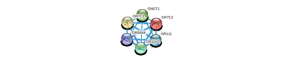 http://string-db.org/version_10/api/image/networkList?limit=0&targetmode=proteins&caller_identity=gene_cards&network_flavor=evidence&identifiers=9606.ENSP00000328215%0d%0a9606.ENSP00000248072%0d%0a9606.ENSP00000248073%0d%0a9606.ENSP00000248572%0d%0a9606.ENSP00000252835%0d%0a9606.ENSP00000259357%0d%0a