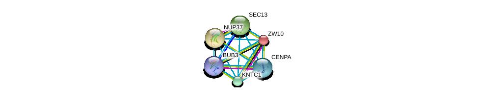 http://string-db.org/version_10/api/image/networkList?limit=0&targetmode=proteins&caller_identity=gene_cards&network_flavor=evidence&identifiers=9606.ENSP00000328236%0d%0a9606.ENSP00000200135%0d%0a9606.ENSP00000251074%0d%0a9606.ENSP00000357858%0d%0a9606.ENSP00000312122%0d%0a9606.ENSP00000336868%0d%0a