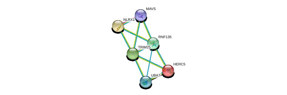 http://string-db.org/version_10/api/image/networkList?limit=0&targetmode=proteins&caller_identity=gene_cards&network_flavor=evidence&identifiers=9606.ENSP00000328340%0d%0a9606.ENSP00000333266%0d%0a9606.ENSP00000323889%0d%0a9606.ENSP00000292199%0d%0a9606.ENSP00000264350%0d%0a9606.ENSP00000401980%0d%0a