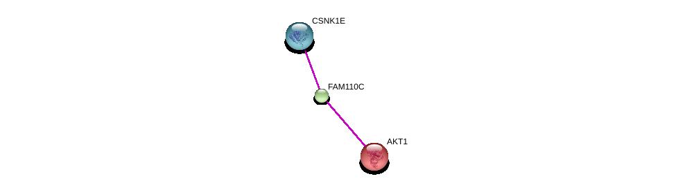 http://string-db.org/version_10/api/image/networkList?limit=0&targetmode=proteins&caller_identity=gene_cards&network_flavor=evidence&identifiers=9606.ENSP00000328347%0d%0a9606.ENSP00000352929%0d%0a9606.ENSP00000270202%0d%0a