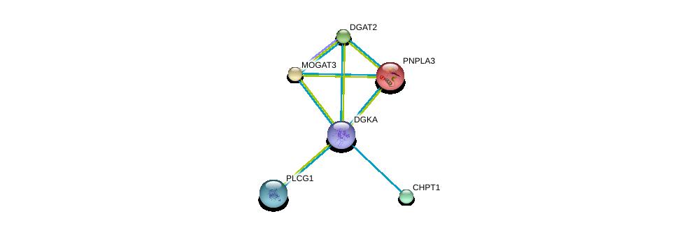 http://string-db.org/version_10/api/image/networkList?limit=0&targetmode=proteins&caller_identity=gene_cards&network_flavor=evidence&identifiers=9606.ENSP00000328405%0d%0a9606.ENSP00000216180%0d%0a9606.ENSP00000223114%0d%0a9606.ENSP00000228027%0d%0a9606.ENSP00000229266%0d%0a9606.ENSP00000244007%0d%0a