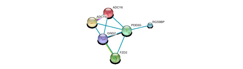 http://string-db.org/version_10/api/image/networkList?limit=0&targetmode=proteins&caller_identity=gene_cards&network_flavor=evidence&identifiers=9606.ENSP00000328412%0d%0a9606.ENSP00000312126%0d%0a9606.ENSP00000311405%0d%0a9606.ENSP00000323901%0d%0a9606.ENSP00000334134%0d%0a9606.ENSP00000334448%0d%0a