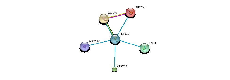 http://string-db.org/version_10/api/image/networkList?limit=0&targetmode=proteins&caller_identity=gene_cards&network_flavor=evidence&identifiers=9606.ENSP00000328412%0d%0a9606.ENSP00000356825%0d%0a9606.ENSP00000218006%0d%0a9606.ENSP00000232461%0d%0a9606.ENSP00000235628%0d%0a9606.ENSP00000240093%0d%0a