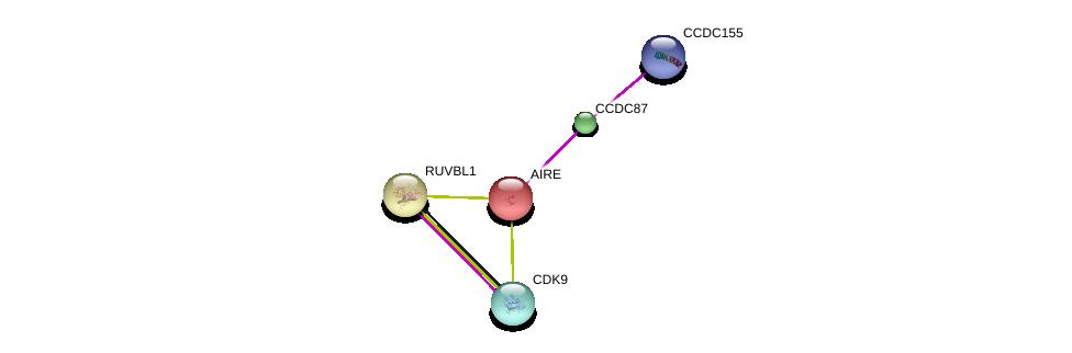http://string-db.org/version_10/api/image/networkList?limit=0&targetmode=proteins&caller_identity=gene_cards&network_flavor=evidence&identifiers=9606.ENSP00000328487%0d%0a9606.ENSP00000404220%0d%0a9606.ENSP00000291582%0d%0a9606.ENSP00000318297%0d%0a9606.ENSP00000362361%0d%0a9606.ENSP00000362361%0d%0a