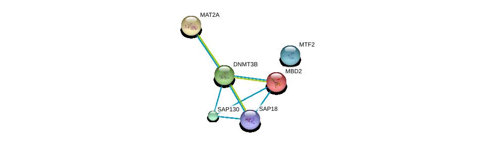 http://string-db.org/version_10/api/image/networkList?limit=0&targetmode=proteins&caller_identity=gene_cards&network_flavor=evidence&identifiers=9606.ENSP00000328547%0d%0a9606.ENSP00000359321%0d%0a9606.ENSP00000256429%0d%0a9606.ENSP00000371973%0d%0a9606.ENSP00000303147%0d%0a9606.ENSP00000350333%0d%0a
