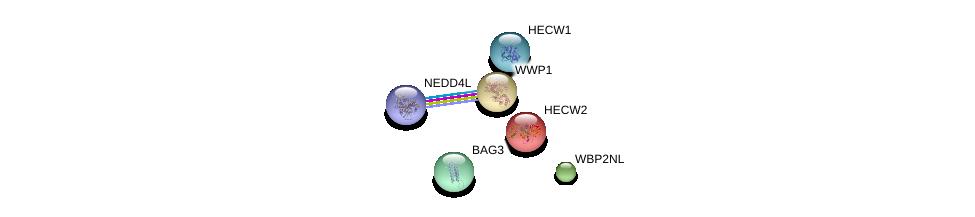 http://string-db.org/version_10/api/image/networkList?limit=0&targetmode=proteins&caller_identity=gene_cards&network_flavor=evidence&identifiers=9606.ENSP00000328800%0d%0a9606.ENSP00000383199%0d%0a9606.ENSP00000379228%0d%0a9606.ENSP00000358081%0d%0a9606.ENSP00000265428%0d%0a9606.ENSP00000260983%0d%0a