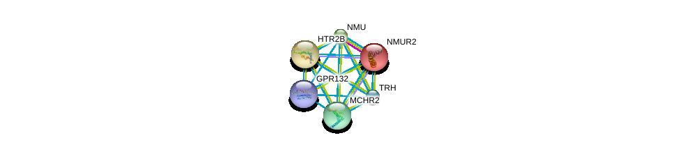 http://string-db.org/version_10/api/image/networkList?limit=0&targetmode=proteins&caller_identity=gene_cards&network_flavor=evidence&identifiers=9606.ENSP00000328818%0d%0a9606.ENSP00000303452%0d%0a9606.ENSP00000281806%0d%0a9606.ENSP00000264218%0d%0a9606.ENSP00000258400%0d%0a9606.ENSP00000255262%0d%0a