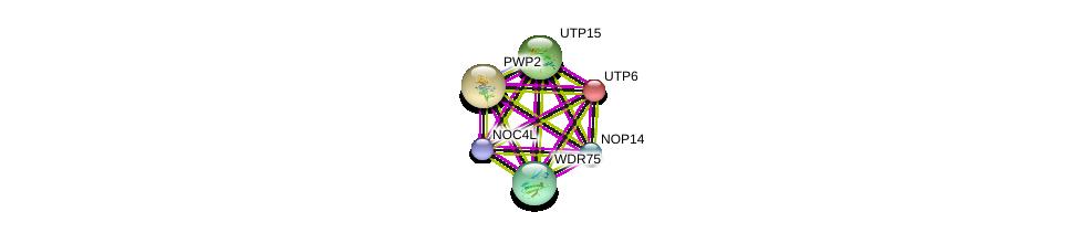http://string-db.org/version_10/api/image/networkList?limit=0&targetmode=proteins&caller_identity=gene_cards&network_flavor=evidence&identifiers=9606.ENSP00000328854%0d%0a9606.ENSP00000261708%0d%0a9606.ENSP00000291576%0d%0a9606.ENSP00000296792%0d%0a9606.ENSP00000314193%0d%0a9606.ENSP00000315674%0d%0a