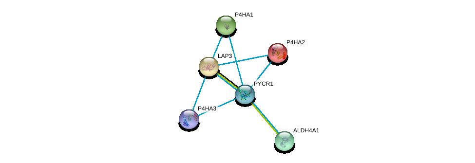 http://string-db.org/version_10/api/image/networkList?limit=0&targetmode=proteins&caller_identity=gene_cards&network_flavor=evidence&identifiers=9606.ENSP00000328858%0d%0a9606.ENSP00000226299%0d%0a9606.ENSP00000263556%0d%0a9606.ENSP00000290597%0d%0a9606.ENSP00000332170%0d%0a9606.ENSP00000166534%0d%0a