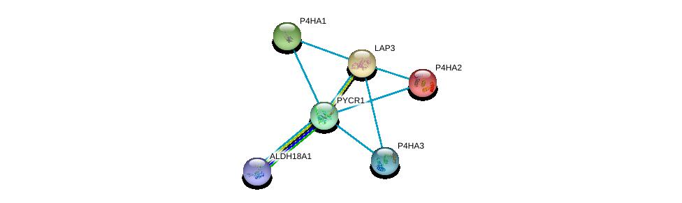 http://string-db.org/version_10/api/image/networkList?limit=0&targetmode=proteins&caller_identity=gene_cards&network_flavor=evidence&identifiers=9606.ENSP00000328858%0d%0a9606.ENSP00000332170%0d%0a9606.ENSP00000226299%0d%0a9606.ENSP00000166534%0d%0a9606.ENSP00000263556%0d%0a9606.ENSP00000360268%0d%0a
