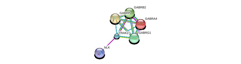http://string-db.org/version_10/api/image/networkList?limit=0&targetmode=proteins&caller_identity=gene_cards&network_flavor=evidence&identifiers=9606.ENSP00000328875%0d%0a9606.ENSP00000384625%0d%0a9606.ENSP00000274547%0d%0a9606.ENSP00000264318%0d%0a9606.ENSP00000265294%0d%0a9606.ENSP00000295452%0d%0a