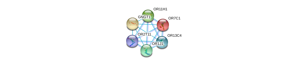 http://string-db.org/version_10/api/image/networkList?limit=0&targetmode=proteins&caller_identity=gene_cards&network_flavor=evidence&identifiers=9606.ENSP00000328934%0d%0a9606.ENSP00000248073%0d%0a9606.ENSP00000248572%0d%0a9606.ENSP00000252835%0d%0a9606.ENSP00000259357%0d%0a9606.ENSP00000277216%0d%0a