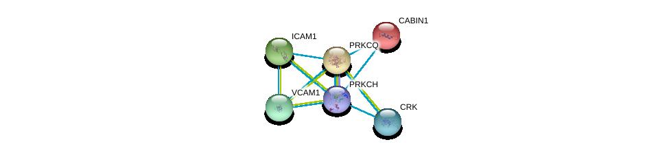 http://string-db.org/version_10/api/image/networkList?limit=0&targetmode=proteins&caller_identity=gene_cards&network_flavor=evidence&identifiers=9606.ENSP00000329127%0d%0a9606.ENSP00000263119%0d%0a9606.ENSP00000264832%0d%0a9606.ENSP00000263125%0d%0a9606.ENSP00000294728%0d%0a9606.ENSP00000300574%0d%0a