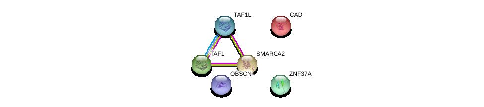 http://string-db.org/version_10/api/image/networkList?limit=0&targetmode=proteins&caller_identity=gene_cards&network_flavor=evidence&identifiers=9606.ENSP00000329141%0d%0a9606.ENSP00000264705%0d%0a9606.ENSP00000455507%0d%0a9606.ENSP00000418379%0d%0a9606.ENSP00000276072%0d%0a9606.ENSP00000265773%0d%0a