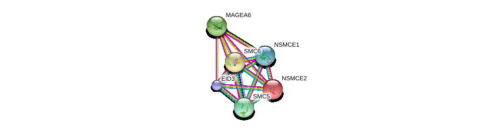 http://string-db.org/version_10/api/image/networkList?limit=0&targetmode=proteins&caller_identity=gene_cards&network_flavor=evidence&identifiers=9606.ENSP00000329199%0d%0a9606.ENSP00000354957%0d%0a9606.ENSP00000355077%0d%0a9606.ENSP00000323439%0d%0a9606.ENSP00000287437%0d%0a9606.ENSP00000435619%0d%0a