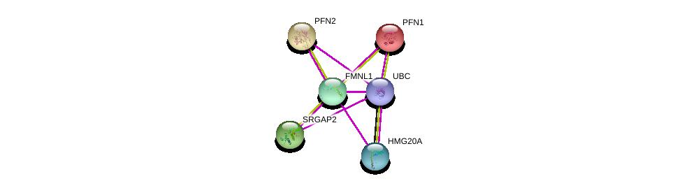 http://string-db.org/version_10/api/image/networkList?limit=0&targetmode=proteins&caller_identity=gene_cards&network_flavor=evidence&identifiers=9606.ENSP00000329219%0d%0a9606.ENSP00000344818%0d%0a9606.ENSP00000336856%0d%0a9606.ENSP00000225655%0d%0a9606.ENSP00000239940%0d%0a9606.ENSP00000295713%0d%0a