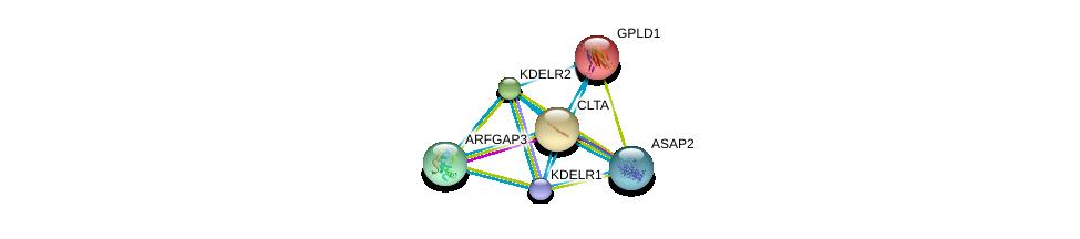 http://string-db.org/version_10/api/image/networkList?limit=0&targetmode=proteins&caller_identity=gene_cards&network_flavor=evidence&identifiers=9606.ENSP00000329471%0d%0a9606.ENSP00000242285%0d%0a9606.ENSP00000258739%0d%0a9606.ENSP00000263245%0d%0a9606.ENSP00000281419%0d%0a9606.ENSP00000230036%0d%0a