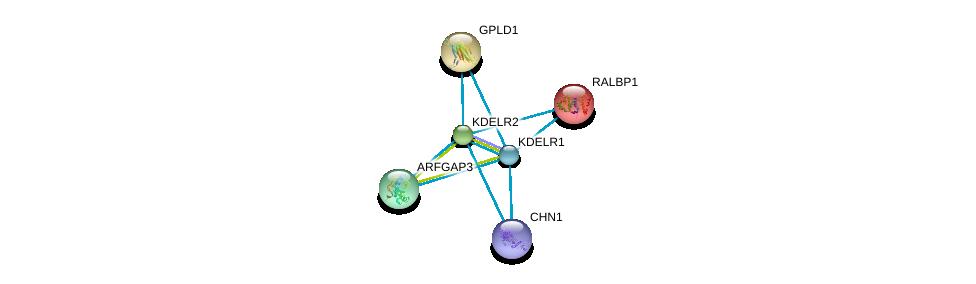http://string-db.org/version_10/api/image/networkList?limit=0&targetmode=proteins&caller_identity=gene_cards&network_flavor=evidence&identifiers=9606.ENSP00000329471%0d%0a9606.ENSP00000258739%0d%0a9606.ENSP00000019317%0d%0a9606.ENSP00000386741%0d%0a9606.ENSP00000263245%0d%0a9606.ENSP00000230036%0d%0a